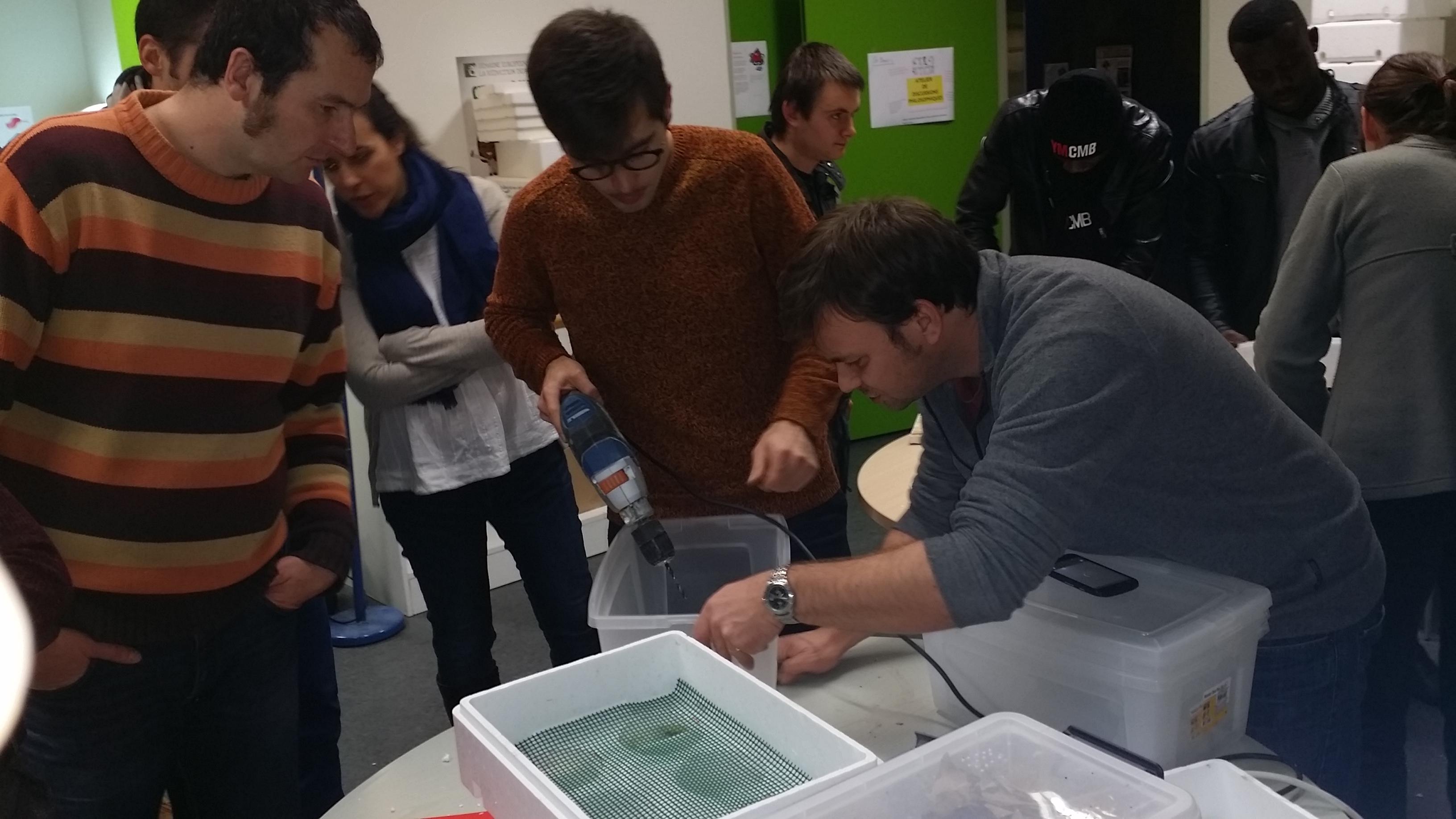 SERD : les ateliers fabrication de lombricomposteurs