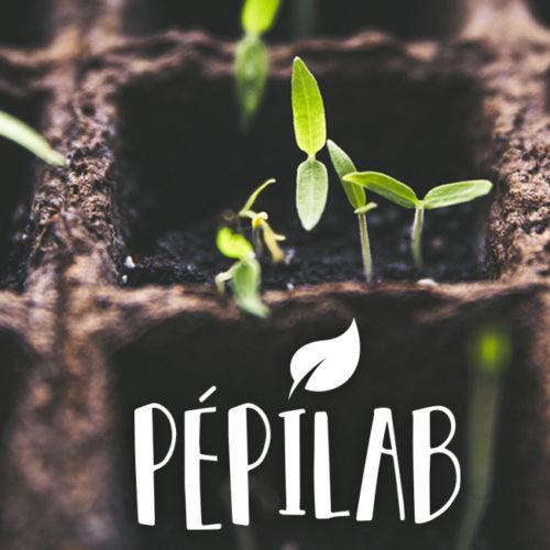pepilab_semis-4
