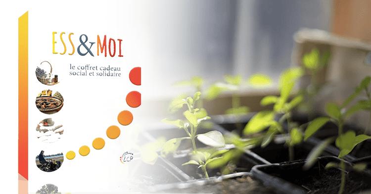 Bio-T-Full rejoint la Box Sociale et Solidaire