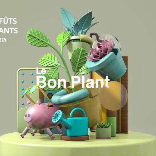 bon plant 31 JUILLET